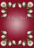 Vinous hälsningkort med ramen av vita rosor Royaltyfri Bild