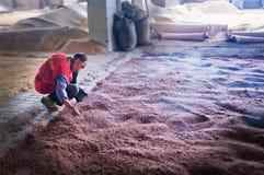 Vinproducenten från kinesiska forntida byar Arkivbild