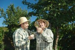 Vinproducenter som testar wine Royaltyfri Bild