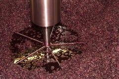 Vinproduktion Royaltyfria Bilder