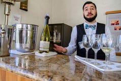 Vinprovning på Sterling Winery Napa Ca royaltyfri foto