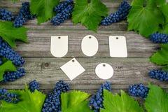Vinranka med blåa druvor och sidor omkring på den lantliga trätabellen för tappning Uppsättningen av differentspapper märker mall Arkivfoto