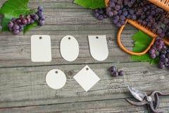 Vinranka med druvor, sidor och sekatör på den lantliga trätabellen för tappning Uppsättningen av differentspapper märker mallen i Royaltyfria Foton