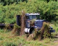 Vinranka täckt lastbil Fotografering för Bildbyråer