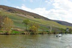 Vinrankagårdar av Bernkastel-Kues på floden Mosel i Tyskland Royaltyfri Foto