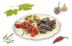 Vinrankasidor med grönsaker Arkivbilder