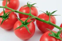 Vinrankatomater (Solanumlycopersicumen) Royaltyfri Fotografi