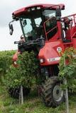 Vinskörd på en vingård på den Mosel floden i Tyskland mekaniskt Fotografering för Bildbyråer