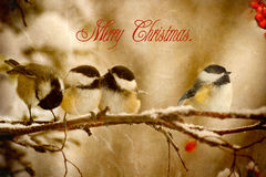 Vintaage Christmas card. Royalty Free Stock Images