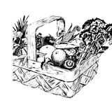 Vintage 1950s Harvest Basket. Vintage 1950s etched-style harvest of fruit and vegetables in a basket; detailed black and white from authentic hand-drawn royalty free illustration