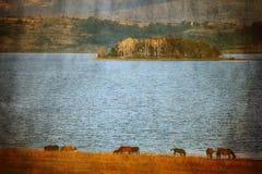 Vintage湖 免版税图库摄影