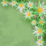 Vintage abstract background with flowers Stock Image