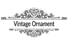 Vintage Abstract Calligraphic Ornament Royalty Free Stock Photo