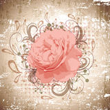 Vintage Abstract Peony Flower Background Stock Photos