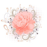 Vintage Abstract Peony Flower Royalty Free Stock Photos
