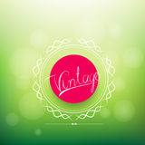 Vintage abstract red labels elements on green background. Stock Photo