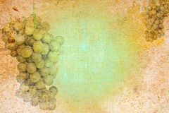Vintage abstract stationery paper with grape motiv Stock Image