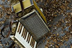 Vintage accordion Stock Photography