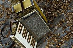 Vintage accordion. Beautiful vintage accordion on wooden floor Stock Photography