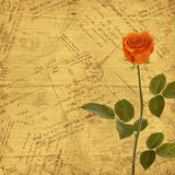 Vintage aged background, envelopes and rose Stock Photos
