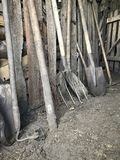 Vintage agricultural tools stand in a row in a wooden barn: rakes, hoes, pitchfork, shovels and more.  royalty free stock photography