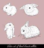 Vintage ajustado com coelhos bonitos. Ilustração Stock