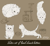 Vintage ajustado com gatinhos bonitos. Ilustração Stock