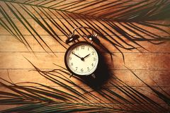 Vintage alarm clock and palm leaves on wooden table. Above view stock photo