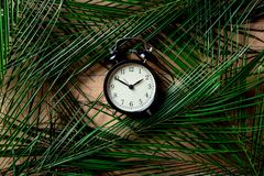 Vintage alarm clock and palm leaves on wooden table. Above view stock photography