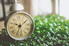Vintage Alarm Clock with Roman Numeral on The Grass Stock Photos