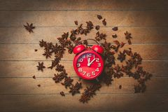 Vintage alarm clock and star anise Royalty Free Stock Image
