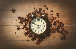 Vintage alarm clock and star anise Royalty Free Stock Photo