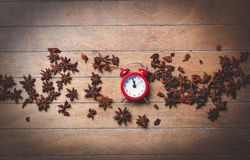 Vintage alarm clock and star anise Stock Photo