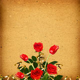 Vintage album for photos with a bouquet of red roses and tul Royalty Free Stock Photo