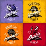 Vintage American furious bull, wolf, panther, rhino bikers club tee print vector design. Stock Photography