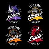 Vintage American furious bull, wolf, panther, rhino bikers club tee print vector design. Street wear t-shirt emblem. Premium quality wild animal superior logo Stock Photography