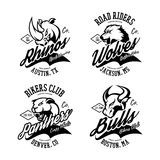 Vintage American furious bull, wolf, panther, rhino bikers club tee print vector design. Stock Images