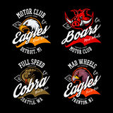 Vintage American furious eagle, boar and cobra bikers club tee print vector design set. Stock Photos