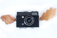 Vintage Analogue Photo Camera with wings Dry Maple Leaves on white background, Top View . Vintage Analogue Photo Camera in Dry Maple Leaves as natural royalty free stock photography