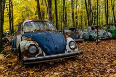 Vintage Antique Car - Junkyard in Autumn - Abandoned Volkswagen Type 1 / Beetle - Pennsylvania royalty free stock photo