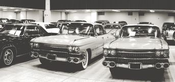 Vintage antique cars show Royalty Free Stock Photo
