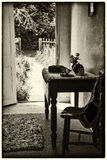 Vintage antique sepia Victorian English country garden. View from indoors Stock Photos