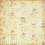 Vintage antique shabby flourish texture Stock Photography
