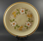 Vintage antique 1960& x27;s 1970& x27;s stoneware dinner plate Stock Images