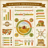 Vintage apple harvest infographic set Royalty Free Stock Images