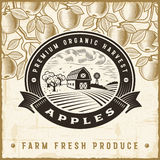 Vintage apple harvest label Royalty Free Stock Photos