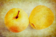 Vintage Apples royalty free stock photography