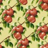 Vintage apples pattern Royalty Free Stock Photo