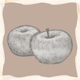 Vintage apples Stock Photo