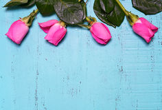 Vintage aqua blue wood background with pink rose buds. Stock Photo
